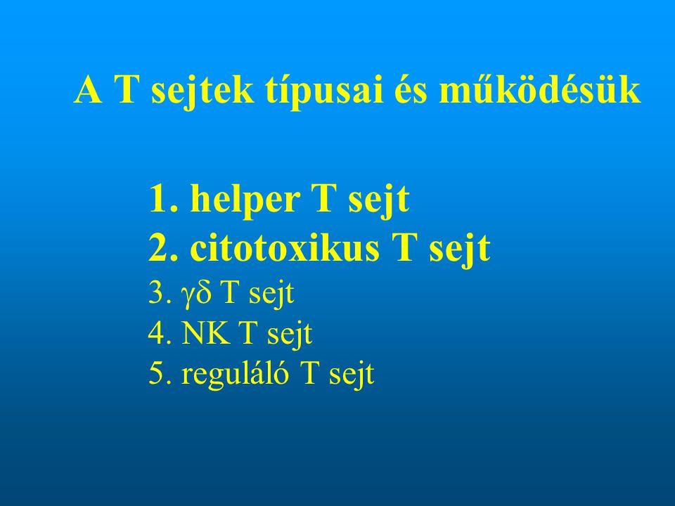 A T sejtek típusai és működésük 1. helper T sejt 2. citotoxikus T sejt 3.  T sejt 4. NK T sejt 5. reguláló T sejt