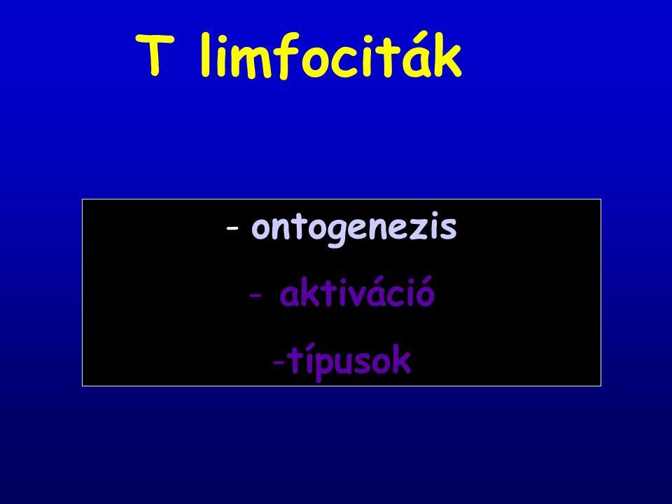 1.Pozitív szelekció  T sejtek szelekciója 2.