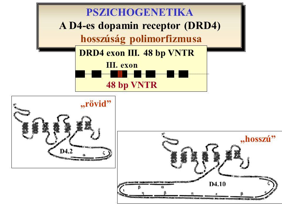 PSZICHOGENETIKA A D4-es dopamin receptor (DRD4) hosszúság polimorfizmusa PSZICHOGENETIKA A D4-es dopamin receptor (DRD4) hosszúság polimorfizmusa III.