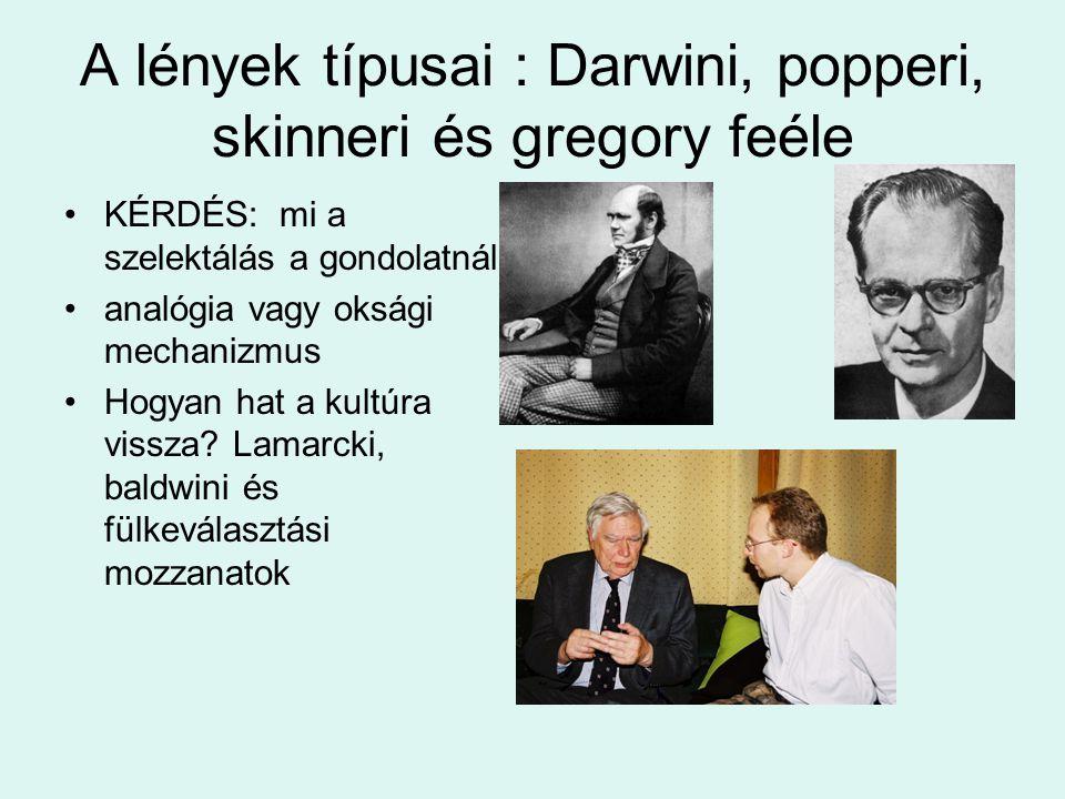 A lények típusai : Darwini, popperi, skinneri és gregory feéle KÉRDÉS: mi a szelektálás a gondolatnál analógia vagy oksági mechanizmus Hogyan hat a ku