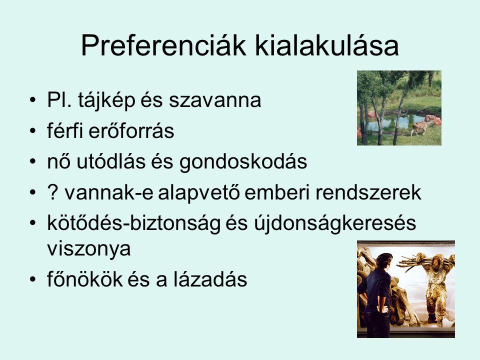 Preferenciák kialakulása Pl. tájkép és szavanna férfi erőforrás nő utódlás és gondoskodás ? vannak-e alapvető emberi rendszerek kötődés-biztonság és ú