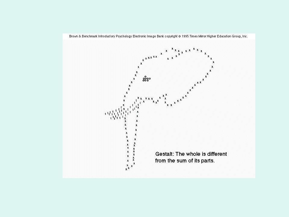Gestaltok és egészek Az egészek és a forma gondolat régmúltja Az alaklélektani mozgalom külső története A Gestalt gondolatrendszer: az érzékleti szerveződés törvényei Az izomorfizmus s az alaklátás helyzete ma Tanulás, gondolkodás és a társas szerveződés az alaklélektanban.