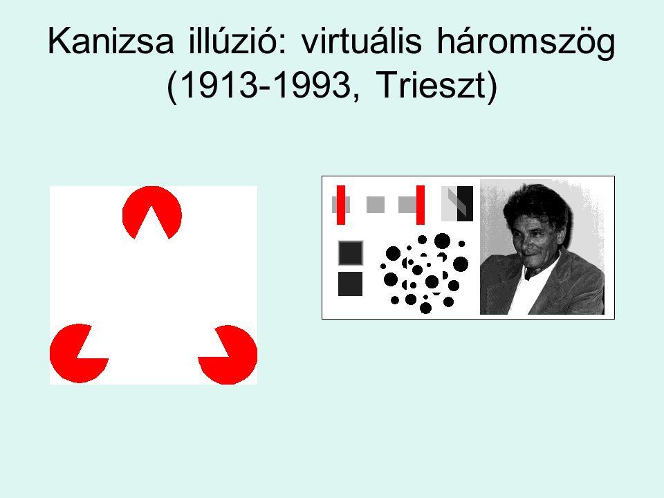 Kanizsa illúzió: virtuális háromszög (1913-1993, Trieszt)