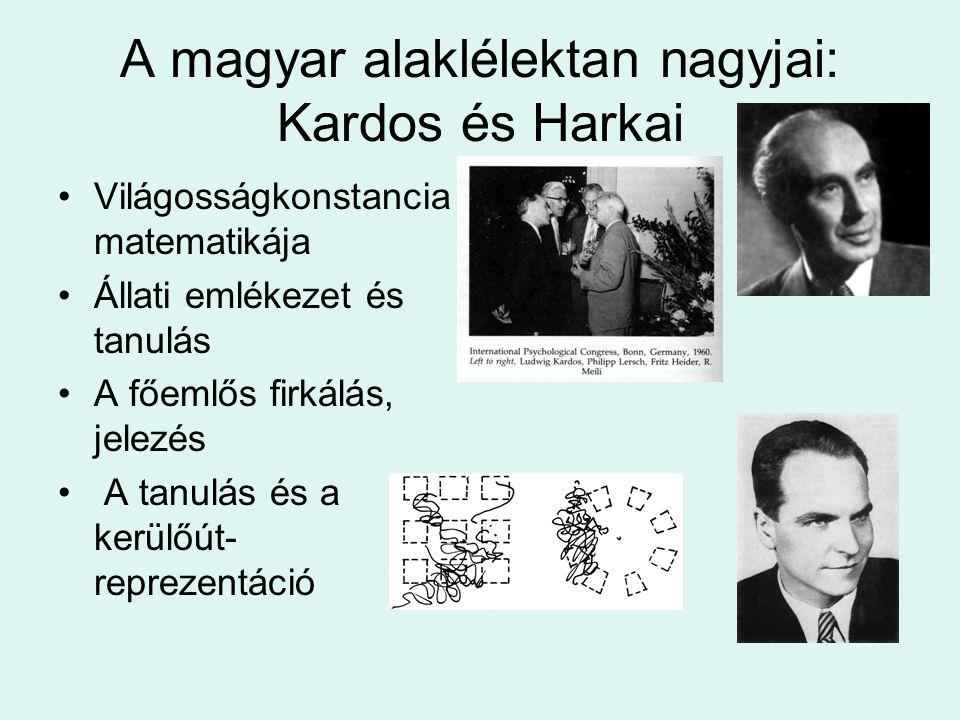 A magyar alaklélektan nagyjai: Kardos és Harkai Világosságkonstancia matematikája Állati emlékezet és tanulás A főemlős firkálás, jelezés A tanulás és
