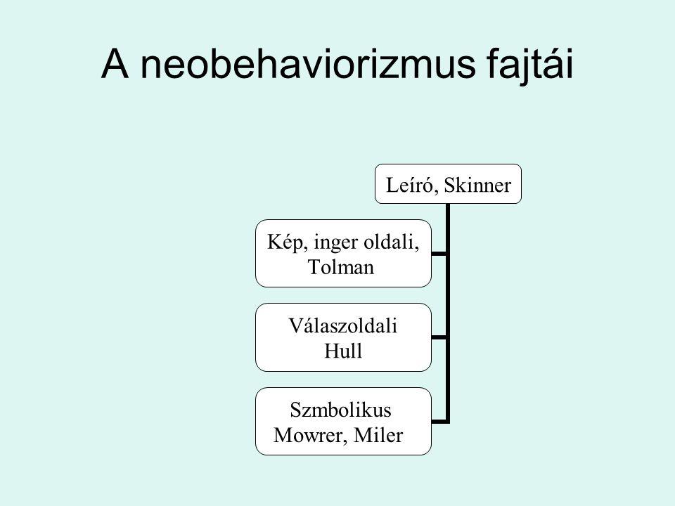 A neobehaviorizmus fajtái Leíró, Skinner Kép, inger oldali, Tolman Válaszoldali Hull Szmbolikus Mowrer, Miler