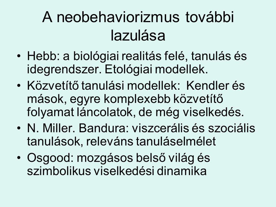 A neobehaviorizmus további lazulása Hebb: a biológiai realitás felé, tanulás és idegrendszer.