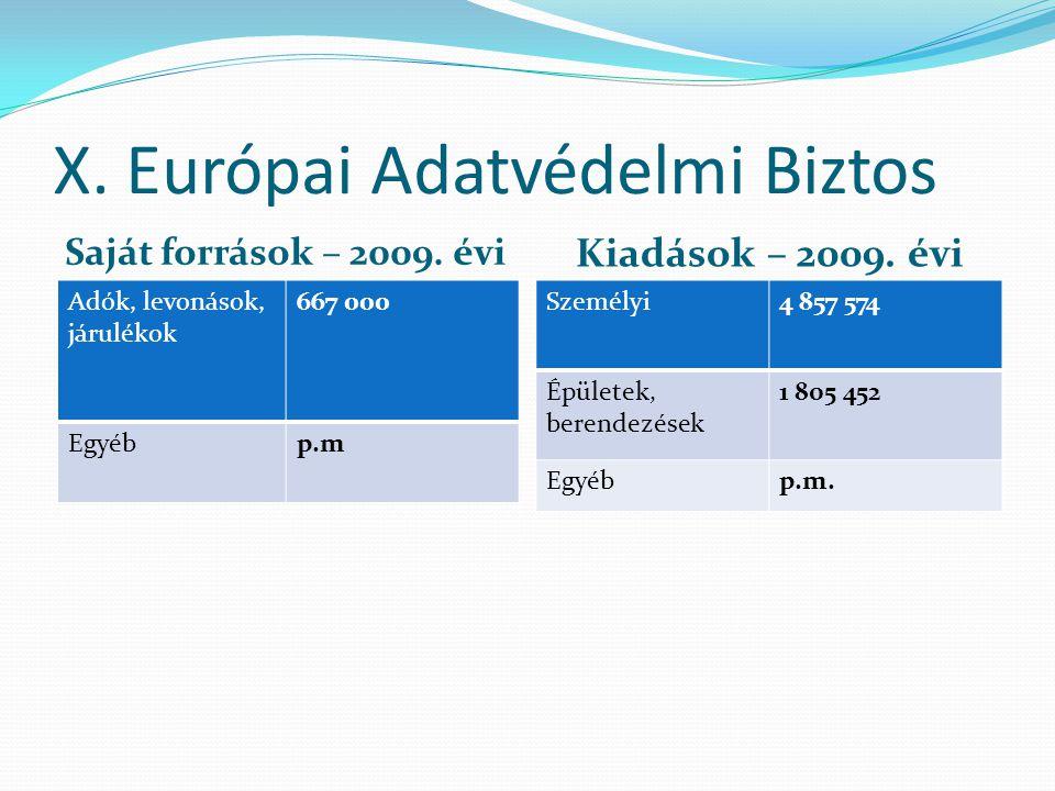 X. Európai Adatvédelmi Biztos Saját források – 2009.