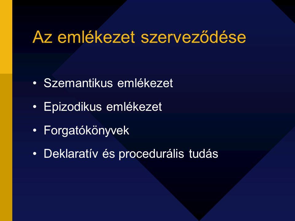 Az emlékezet szerveződése Szemantikus emlékezet Epizodikus emlékezet Forgatókönyvek Deklaratív és procedurális tudás
