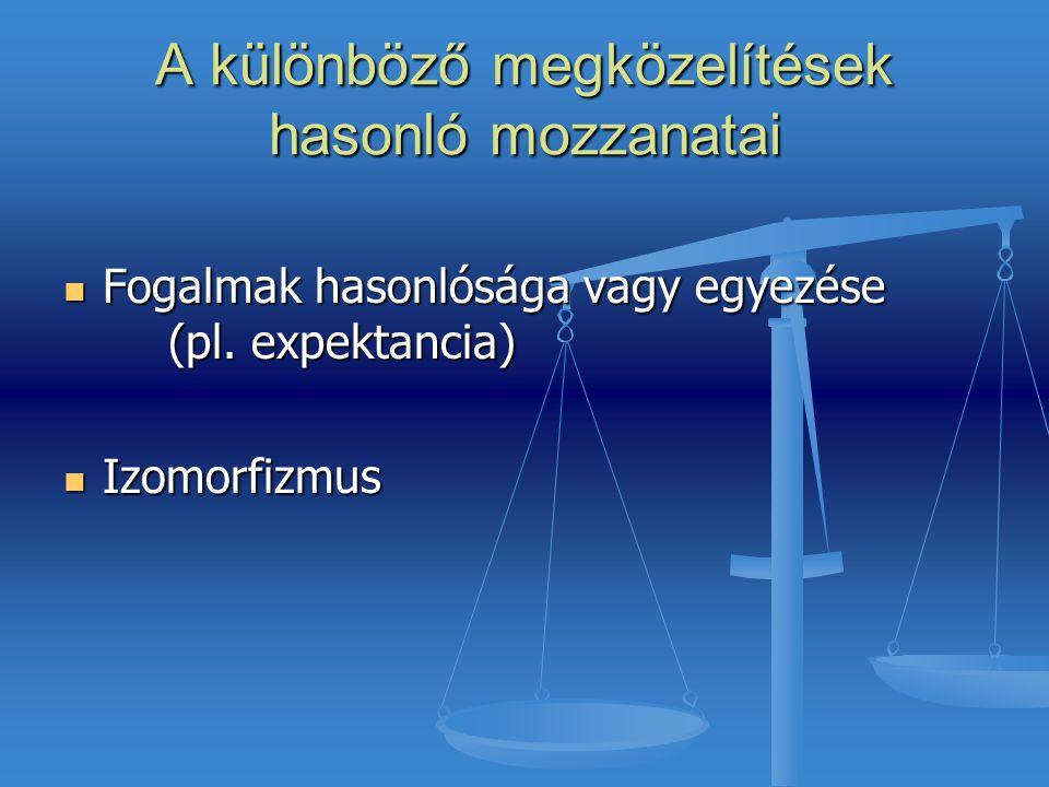 A különböző megközelítések hasonló mozzanatai Fogalmak hasonlósága vagy egyezése (pl. expektancia) Fogalmak hasonlósága vagy egyezése (pl. expektancia