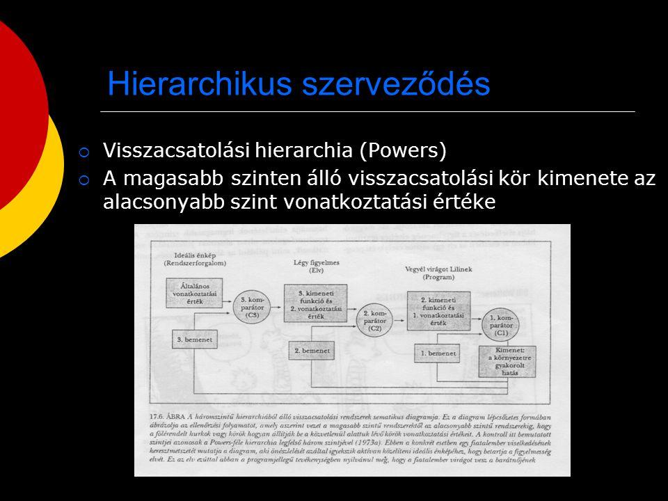 Hierarchikus szerveződés  Visszacsatolási hierarchia (Powers)  A magasabb szinten álló visszacsatolási kör kimenete az alacsonyabb szint vonatkoztat