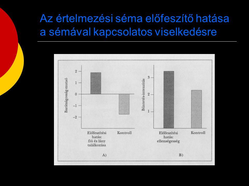 Az értelmezési séma előfeszítő hatása a sémával kapcsolatos viselkedésre