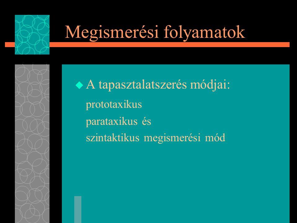 Megismerési folyamatok  A tapasztalatszerés módjai: prototaxikus parataxikus és szintaktikus megismerési mód
