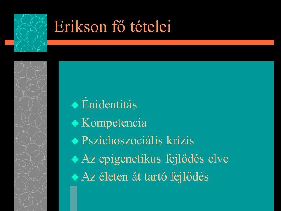 Erikson fő tételei  Énidentitás  Kompetencia  Pszichoszociális krízis  Az epigenetikus fejlődés elve  Az életen át tartó fejlődés