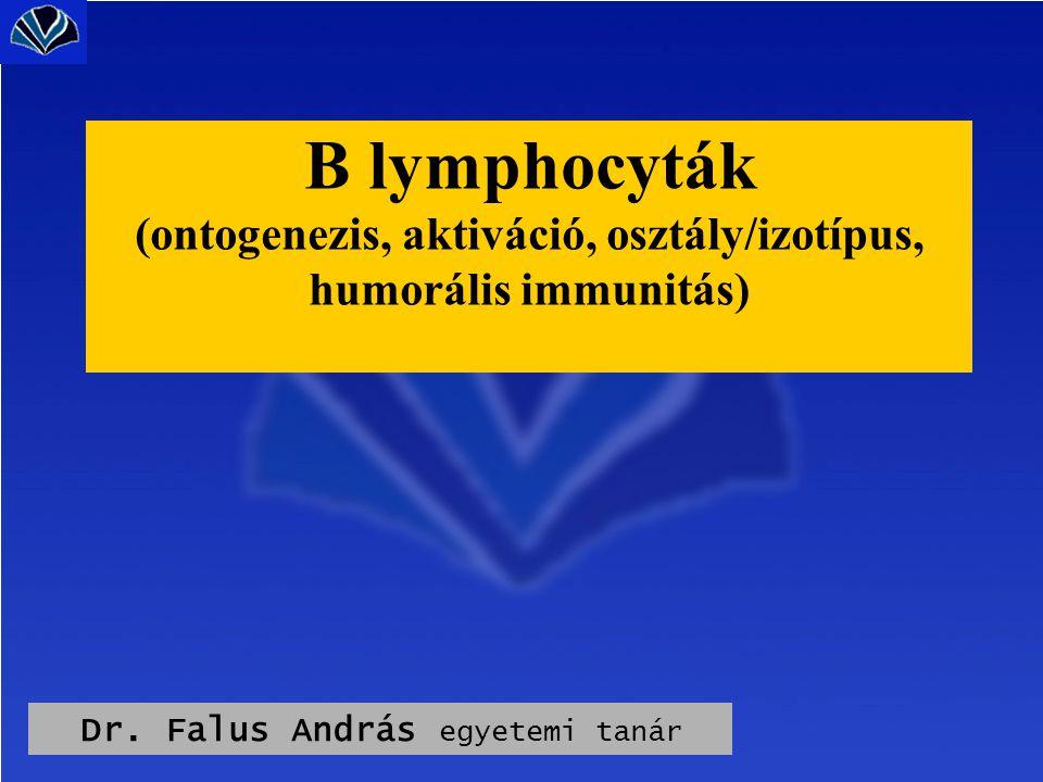 Dr. Falus András egyetemi tanár B lymphocyták (ontogenezis, aktiváció, osztály/izotípus, humorális immunitás)