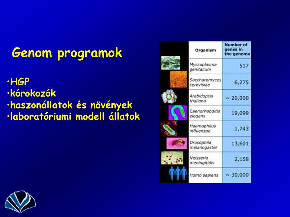 Genom programok HGP kórokozók haszonállatok és növények laboratóriumi modell állatok