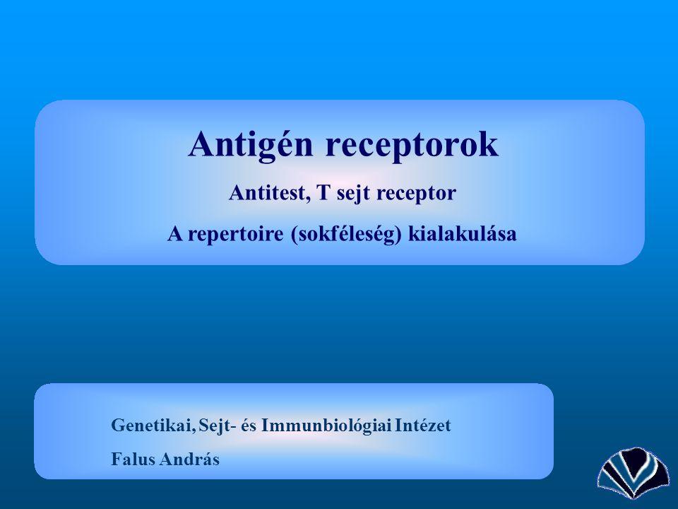 Antigén receptorok Antitest, T sejt receptor A repertoire (sokféleség) kialakulása Genetikai, Sejt- és Immunbiológiai Intézet Falus András