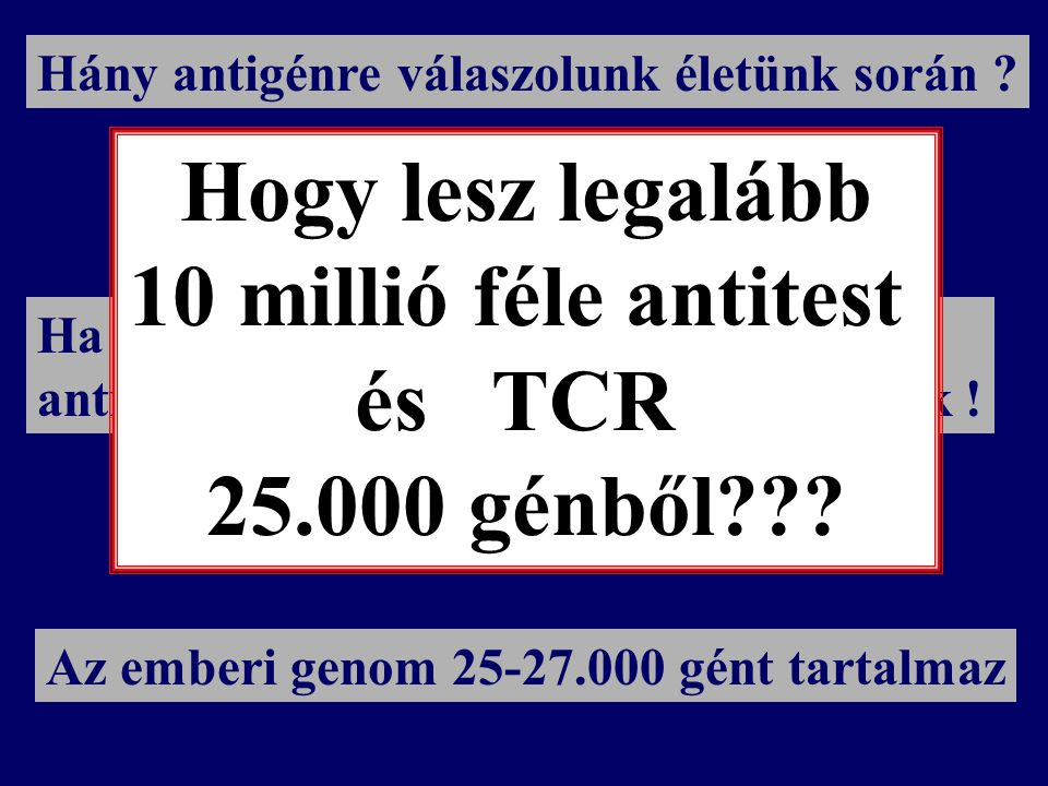 Kb. 10 7 ~ 10 millió féle ag Hány antigénre válaszolunk életünk során .