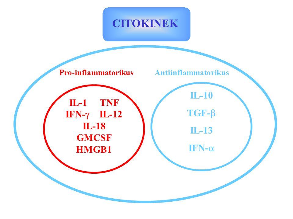 CITOKINEK Pro-inflammatorikusAntiinflammatorikus IL-1 TNF IFN-  IL-12 IL-18 GMCSF HMGB1 IL-10 TGF-  IL-13 IFN- 