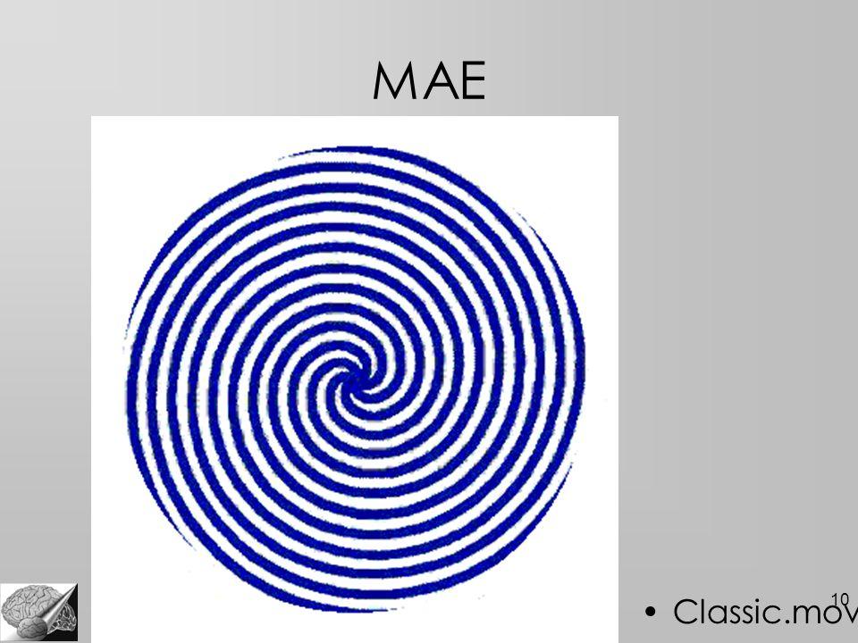 10 MAE Classic.mov