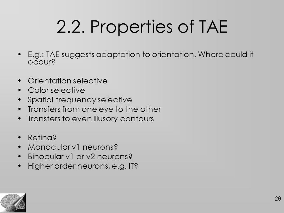 26 2.2. Properties of TAE E.g.: TAE suggests adaptation to orientation.