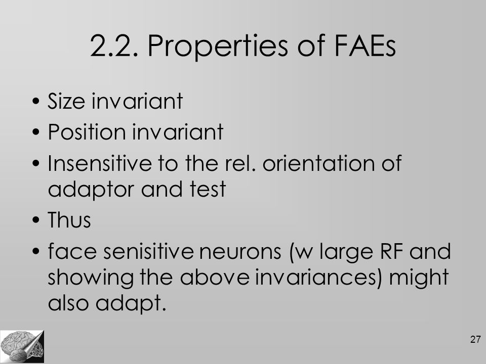 27 2.2. Properties of FAEs Size invariant Position invariant Insensitive to the rel.