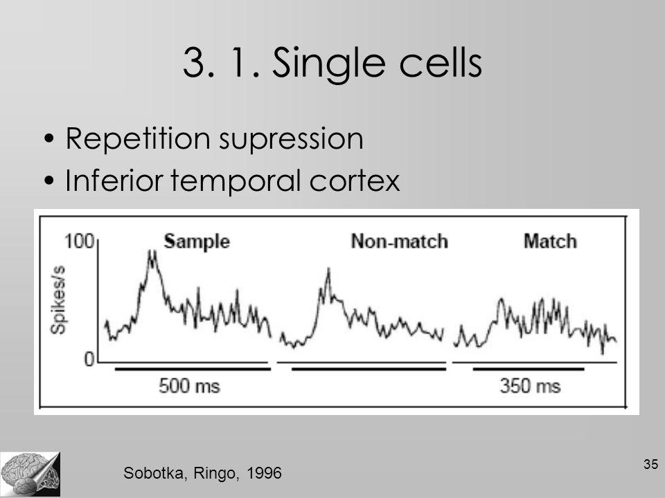 35 3. 1. Single cells Repetition supression Inferior temporal cortex Sobotka, Ringo, 1996