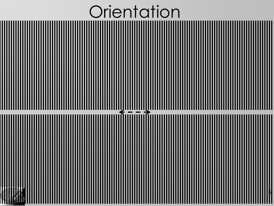 5 Orientation