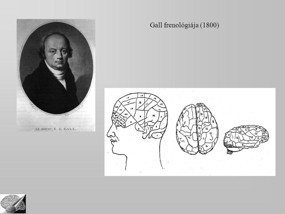 Gall frenológiája (1800)