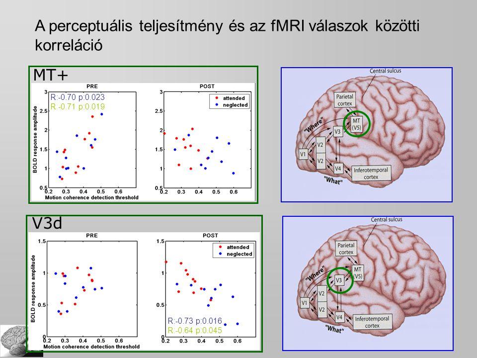 MT+ R:-0.70 p:0.023 R:-0.71 p:0.019 A perceptuális teljesítmény és az fMRI válaszok közötti korreláció V3d R:-0.73 p:0.016 R:-0.64 p:0.045
