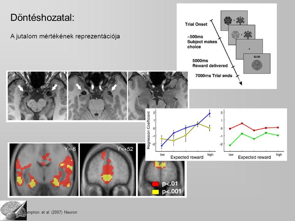 Döntéshozatal: A jutalom mértékének reprezentációja Hampton. et al. (2007) Neuron