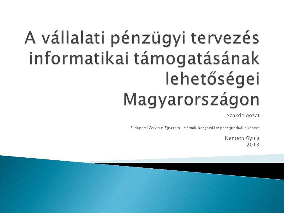 Szakdolgozat Budapesti Corvinus Egyetem – Mérnök-közgazdász posztgraduális képzés Németh Gyula 2013