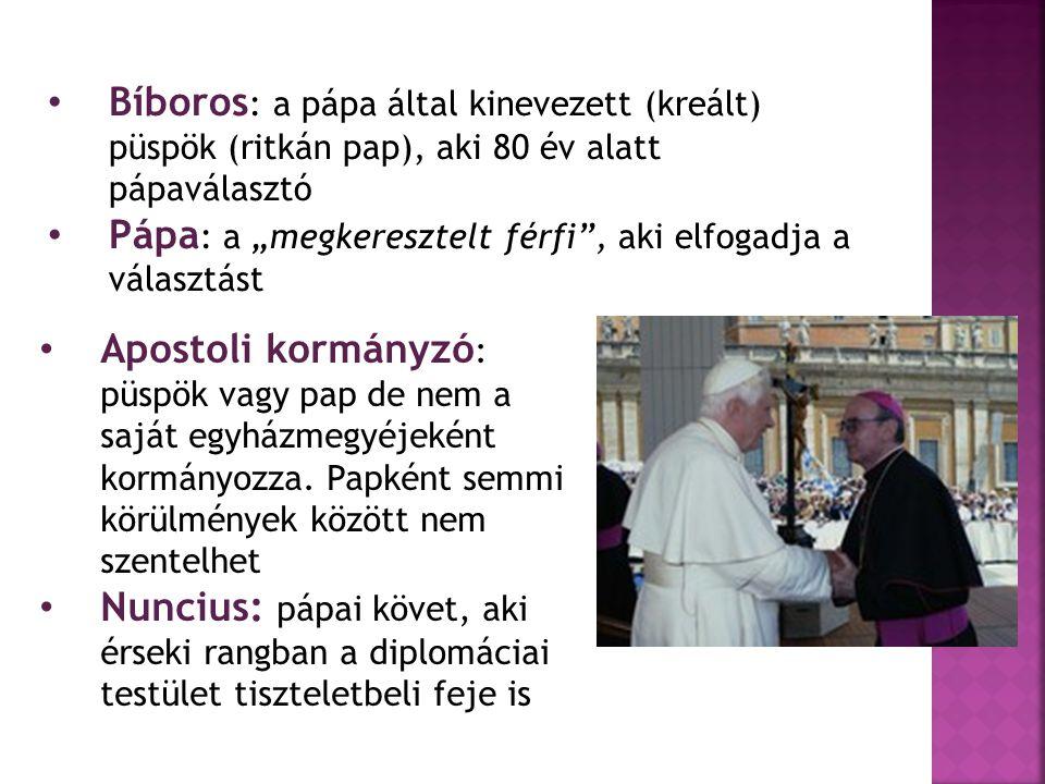 """Bíboros : a pápa által kinevezett (kreált) püspök (ritkán pap), aki 80 év alatt pápaválasztó Pápa : a """"megkeresztelt férfi"""", aki elfogadja a választás"""