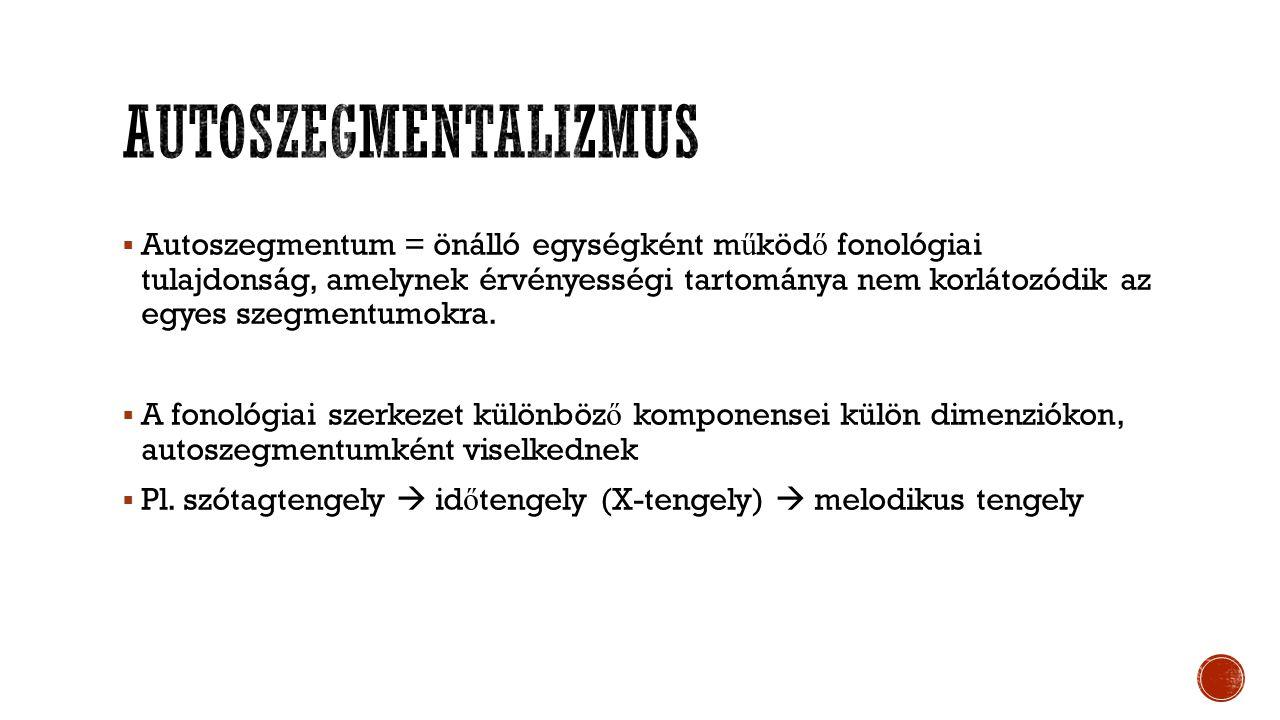  Autoszegmentum = önálló egységként m ű köd ő fonológiai tulajdonság, amelynek érvényességi tartománya nem korlátozódik az egyes szegmentumokra.  A