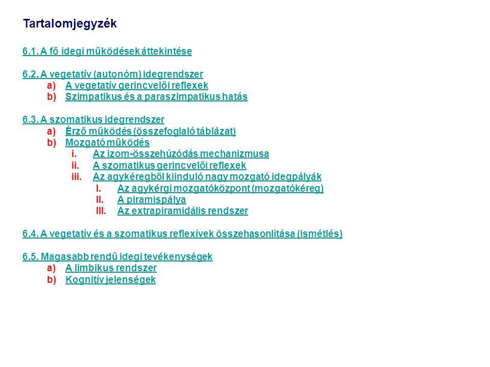Tartalomjegyzék 6.1. A fő idegi működések áttekintése 6.2. A vegetatív (autonóm) idegrendszer a)A vegetatív gerincvelői reflexekA vegetatív gerincvelő