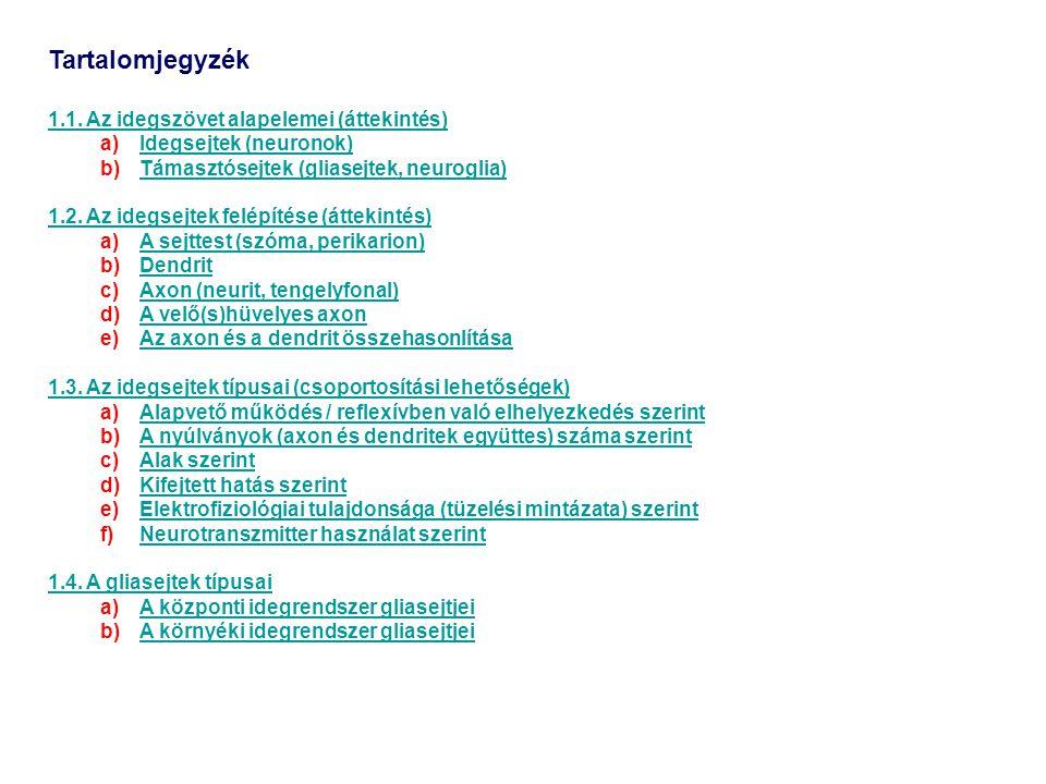 Tartalomjegyzék 1.1. Az idegszövet alapelemei (áttekintés) a)Idegsejtek (neuronok)Idegsejtek (neuronok) b)Támasztósejtek (gliasejtek, neuroglia)Támasz