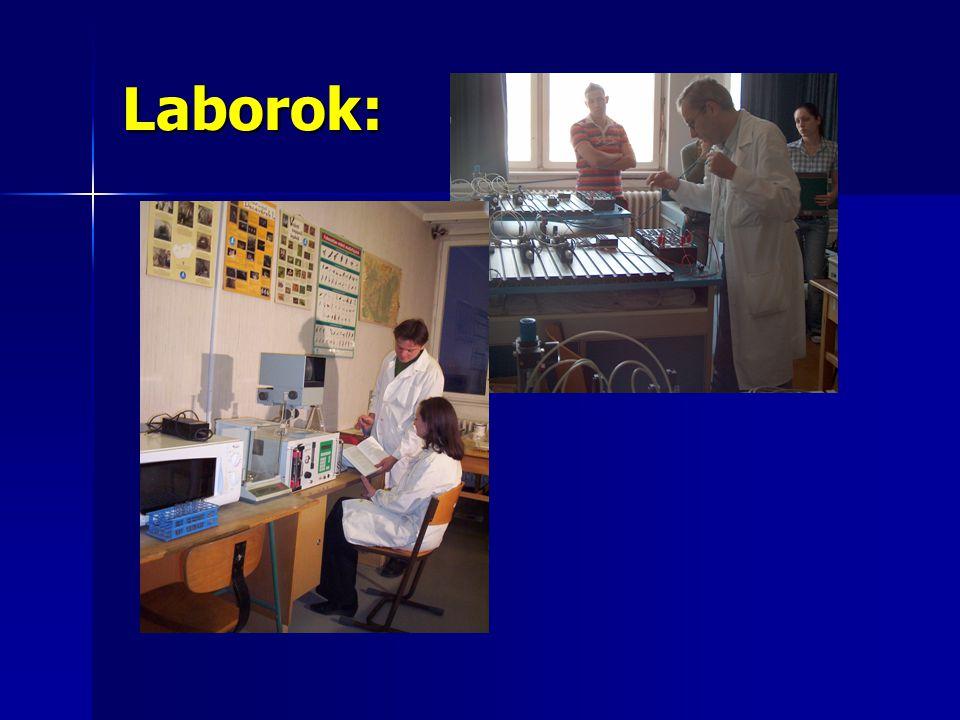 Pályázatok HEFOP/2005/3.3 A felsőoktatás szerkezeti és tartalmi fejlesztése HEFOP/2005/3.3 A felsőoktatás szerkezeti és tartalmi fejlesztése A Környezetvédelmi és Vízügyi Minisztérium 2004.
