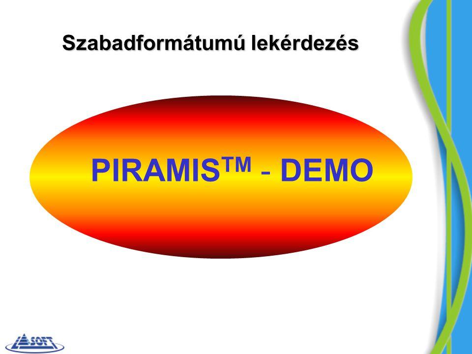 PIRAMIS TM - DEMO Szabadformátumú lekérdezés
