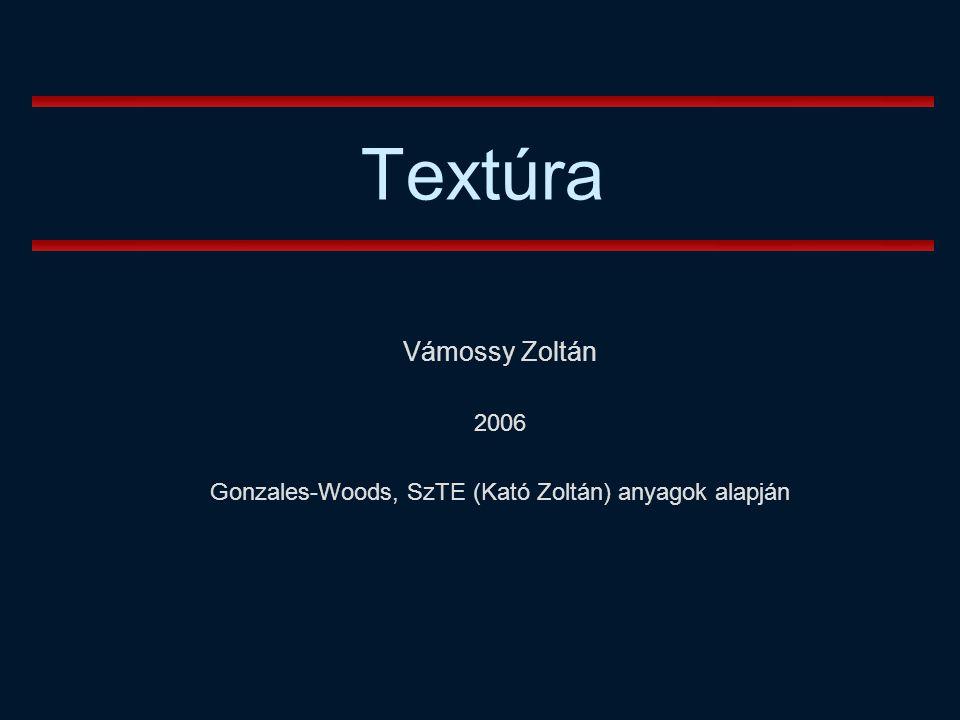 Vámossy Zoltán 2006 Gonzales-Woods, SzTE (Kató Zoltán) anyagok alapján Textúra