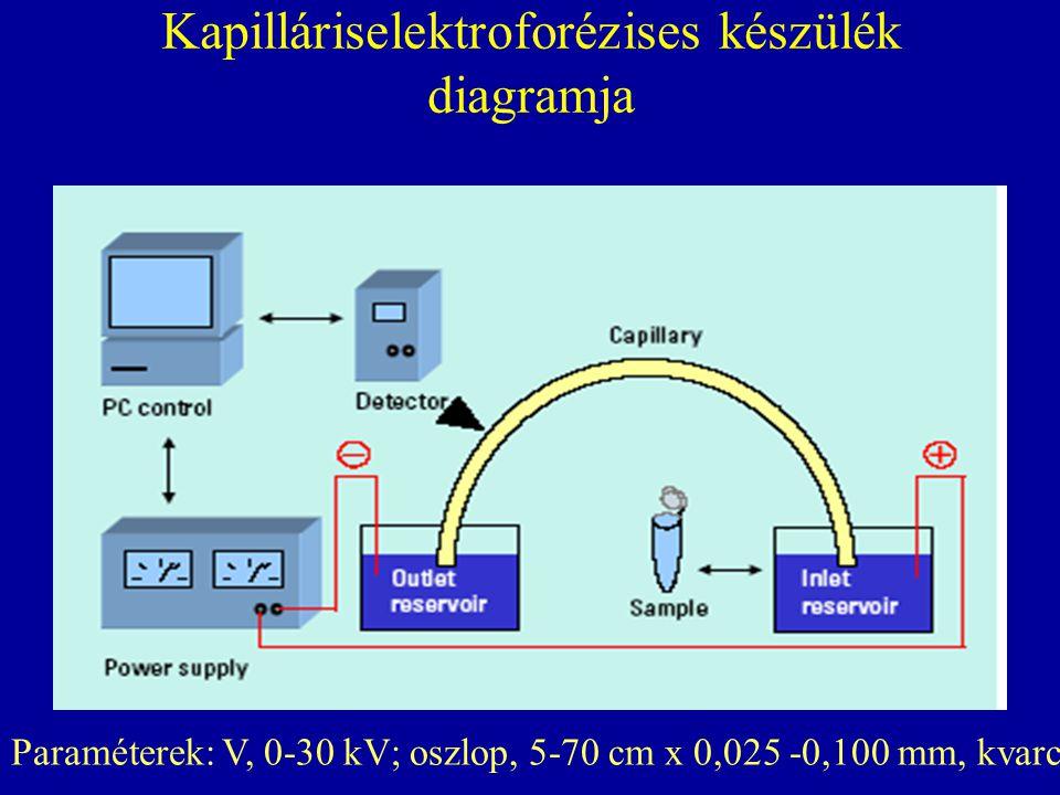 Kapilláriselektroforézises készülék diagramja Paraméterek: V, 0-30 kV; oszlop, 5-70 cm x 0,025 -0,100 mm, kvarc