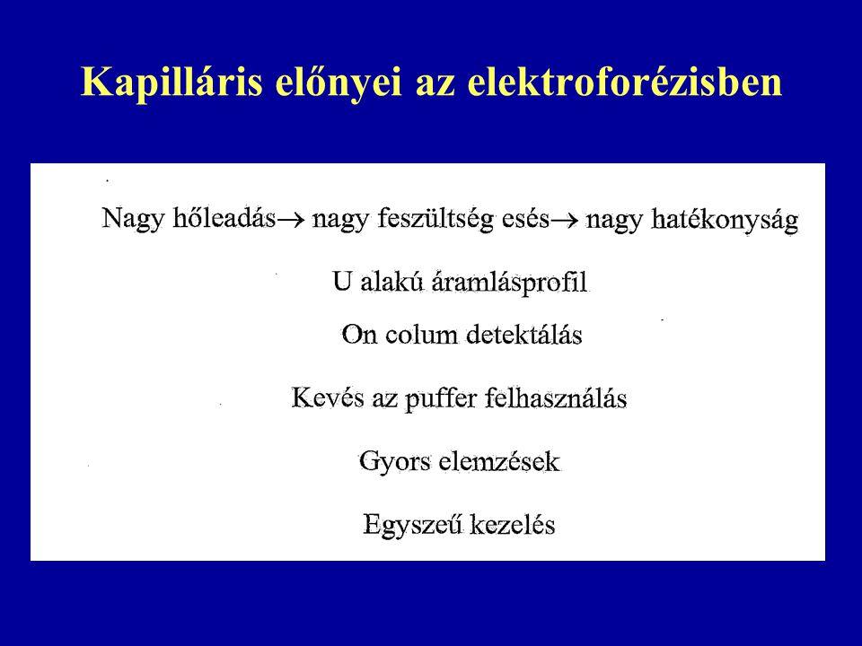 Kapilláris előnyei az elektroforézisben