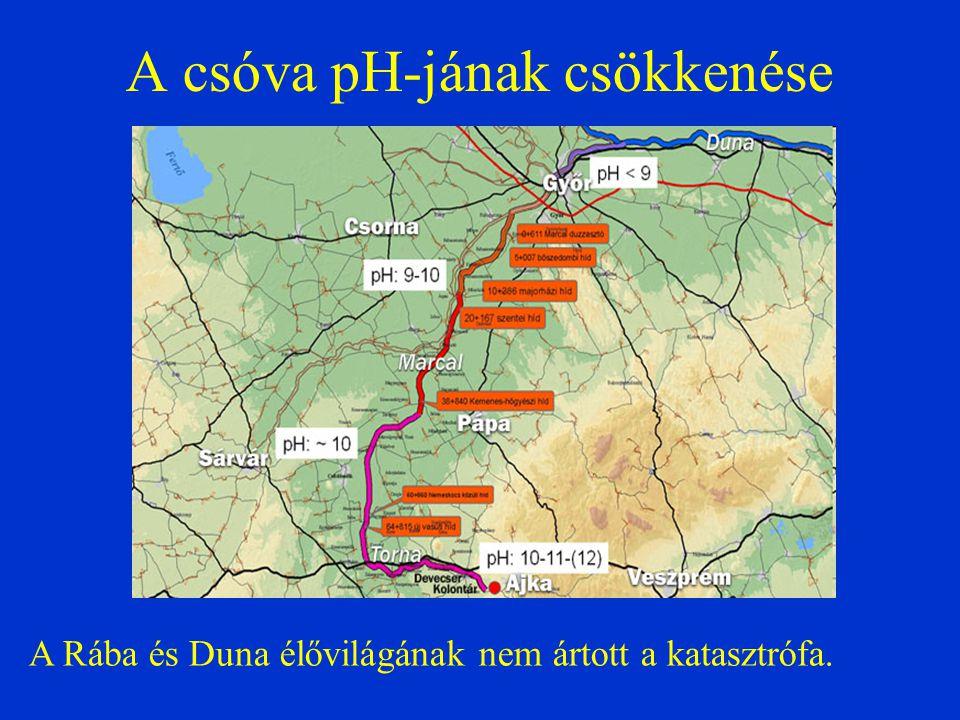 A csóva pH-jának csökkenése A Rába és Duna élővilágának nem ártott a katasztrófa.
