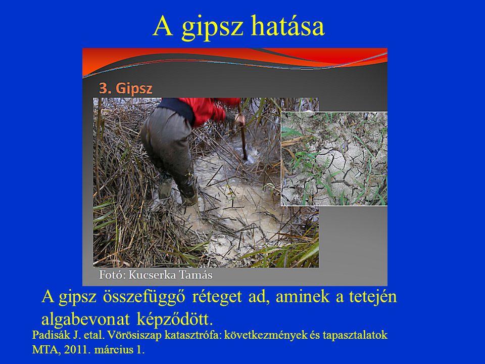 A gipsz hatása Padisák J. etal. Vörösiszap katasztrófa: következmények és tapasztalatok MTA, 2011. március 1. A gipsz összefüggő réteget ad, aminek a