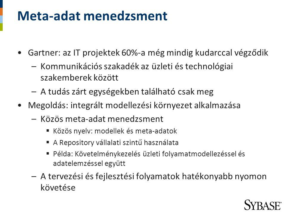 Meta-adat menedzsment Gartner: az IT projektek 60%-a még mindig kudarccal végződik –Kommunikációs szakadék az üzleti és technológiai szakemberek közöt
