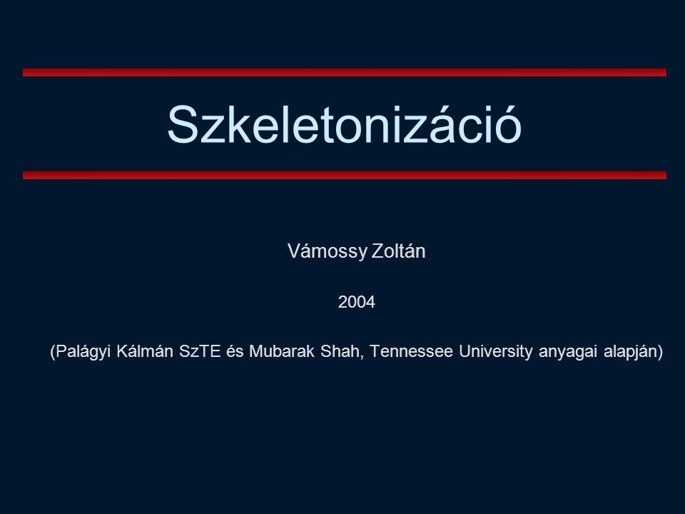 Vámossy Zoltán 2004 (Palágyi Kálmán SzTE és Mubarak Shah, Tennessee University anyagai alapján) Szkeletonizáció