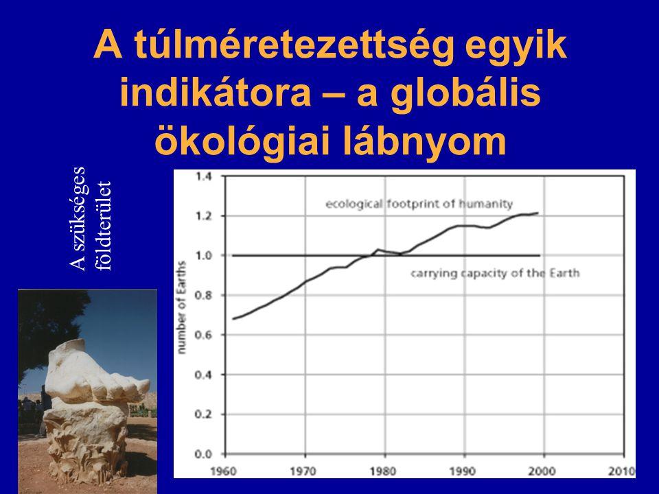 A túlméretezettség egyik indikátora – a globális ökológiai lábnyom év A szükséges földterület