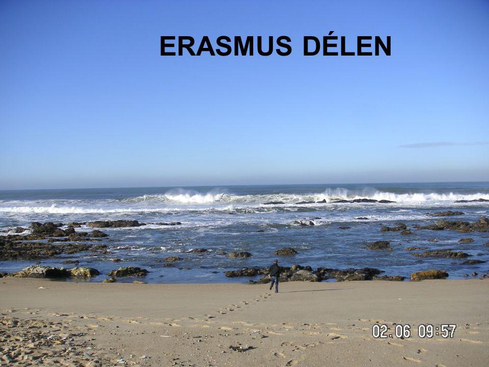 7/20/2014 ERASMUS - szabo.zsolt@nik.uni-obuda.hu 20/31 ERASMUS DÉLEN