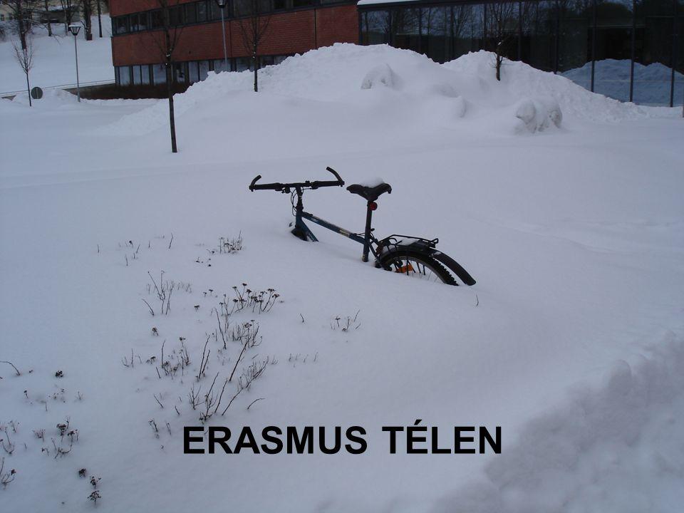 7/20/2014 ERASMUS - szabo.zsolt@nik.uni-obuda.hu 22/31 ERASMUS TÉLEN