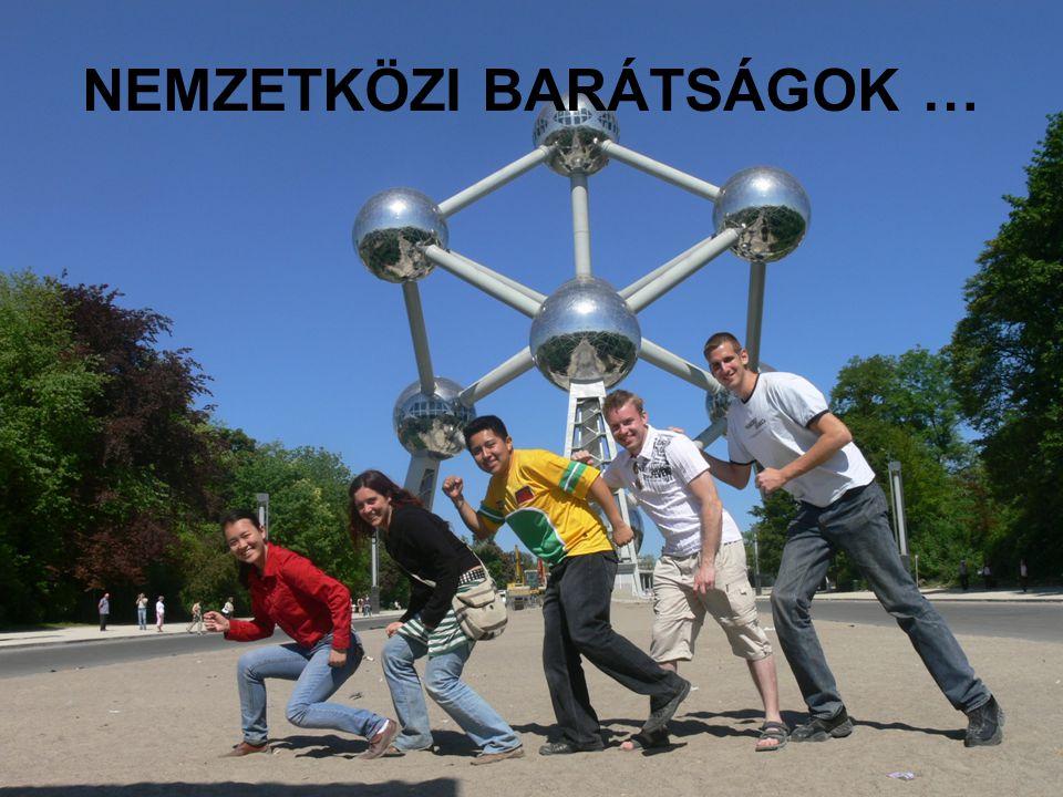 7/20/2014 ERASMUS - szabo.zsolt@nik.uni-obuda.hu 28/31 NEMZETKÖZI BARÁTSÁGOK …