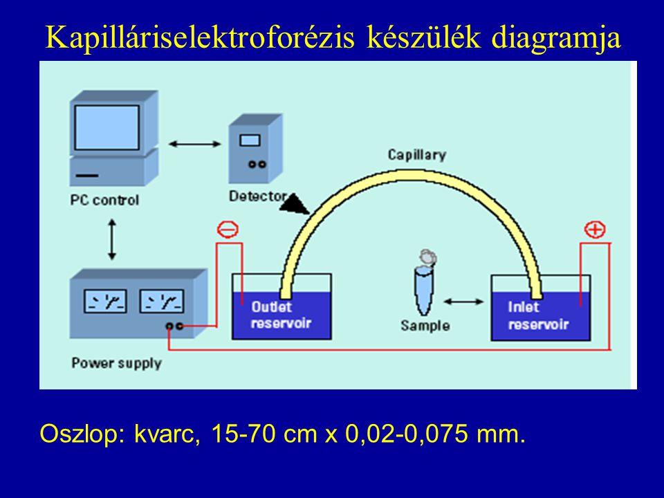 Kapilláriselektroforézis készülék diagramja Oszlop: kvarc, 15-70 cm x 0,02-0,075 mm.