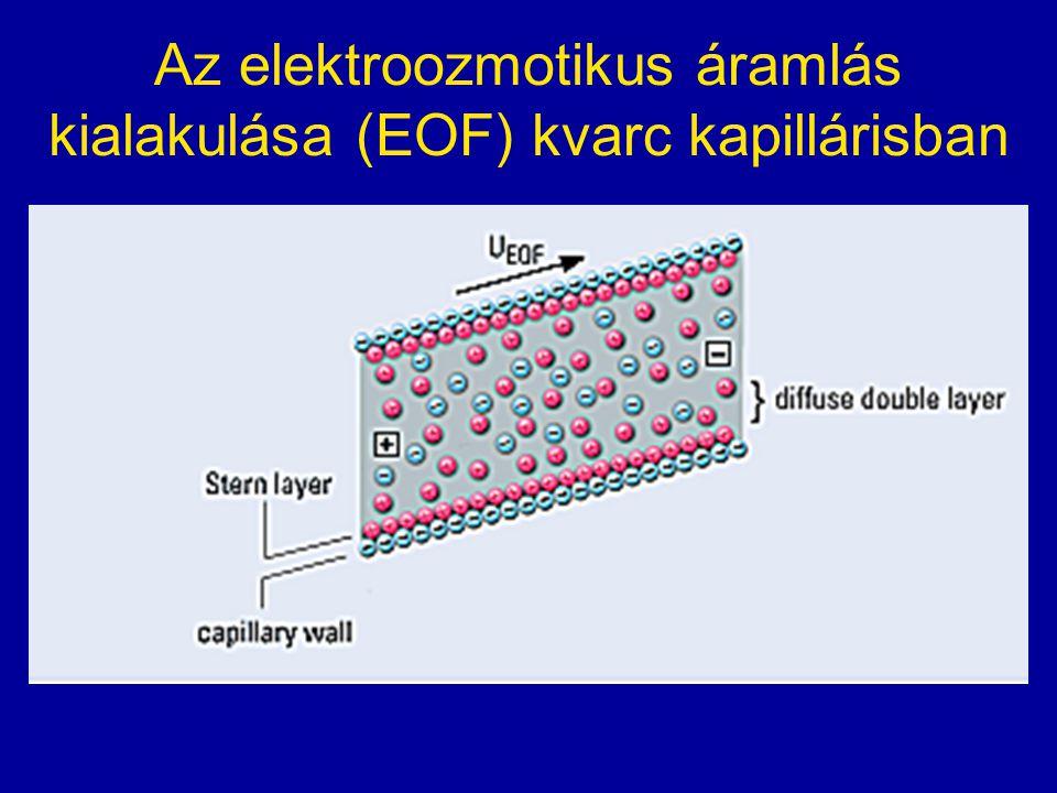 Az elektroozmotikus áramlás kialakulása (EOF) kvarc kapillárisban